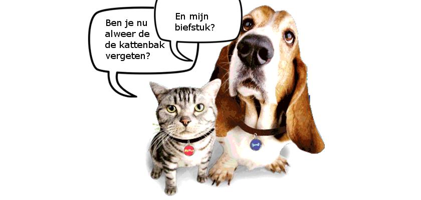 huisdieren 2